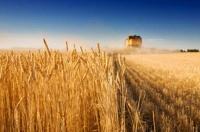 2010 - retrospectiva în agricultură